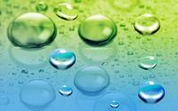 Dew drops wallpaper 1920x1200 jpg