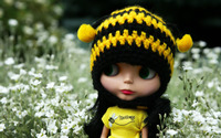 Doll among the wildflowers wallpaper 2560x1600 jpg
