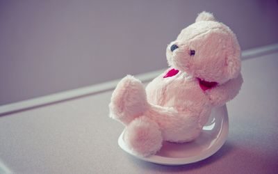Fluffy teddy bear relaxing wallpaper