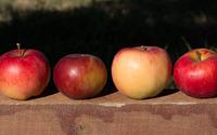 Four apples on a wood beam wallpaper 3840x2160 jpg