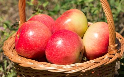 Fresh apples in a basket wallpaper