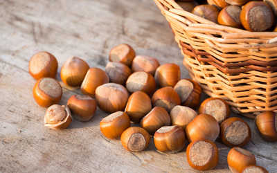 Fresh hazelnuts on the old table Wallpaper