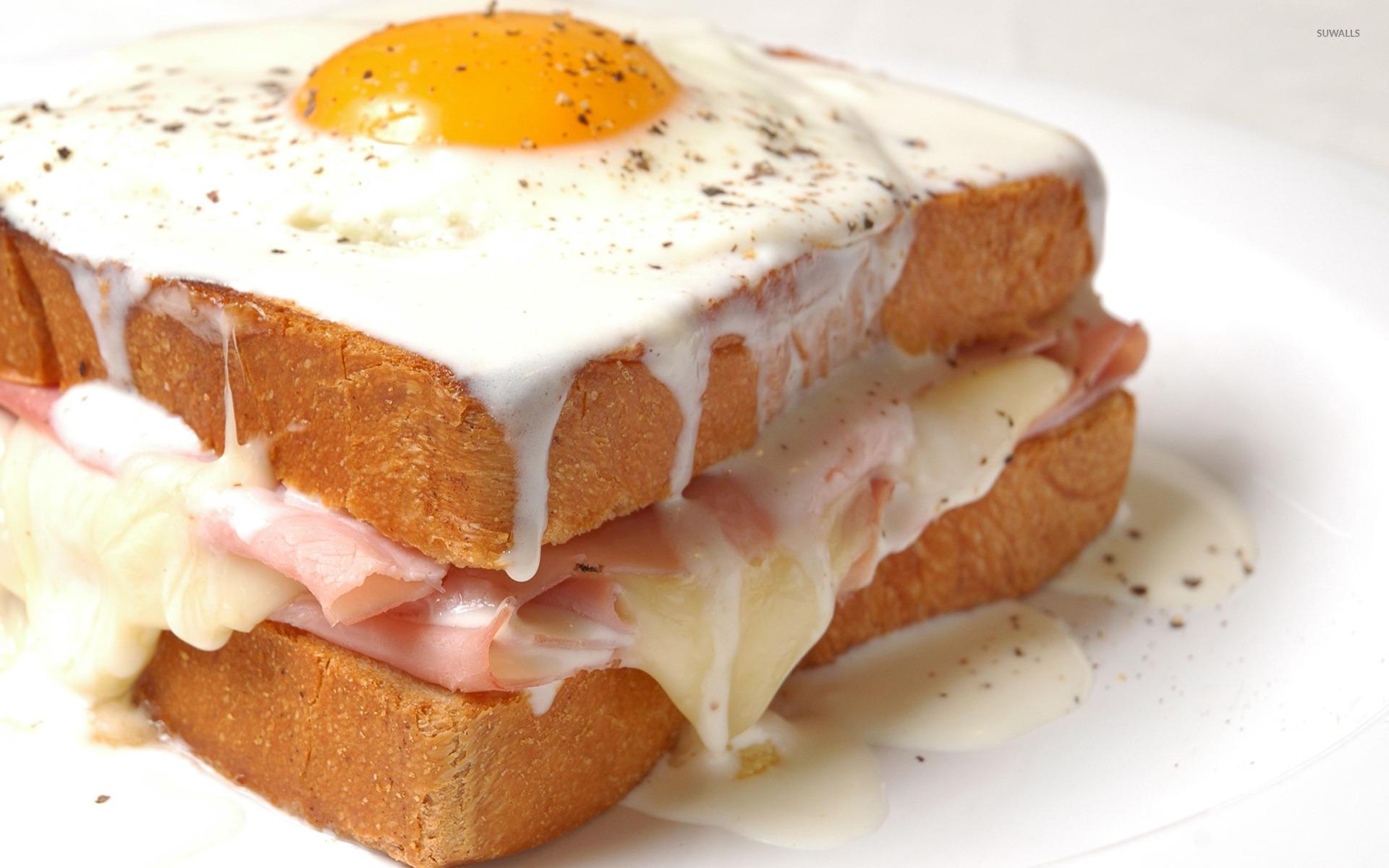 Fried egg sandwich wallpaper - Photography wallpapers - #32066