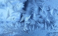 Frost wallpaper 2560x1600 jpg
