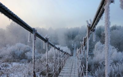 Frozen bridge wallpaper