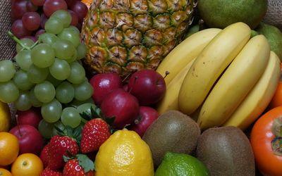 Fruit gathering wallpaper