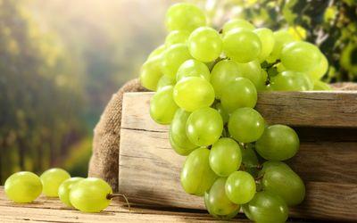 Green grapes [2] wallpaper