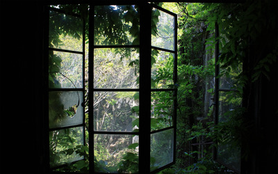 Greenhouse window wallpaper