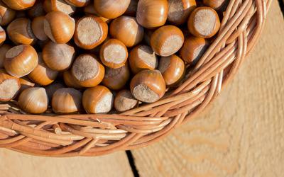 Hazelnut basket on wood Wallpaper