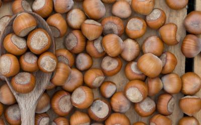 Hazelnuts on a wooden spoon wallpaper