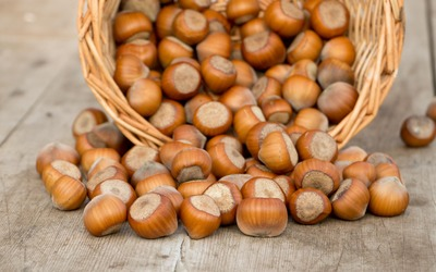 Hazelnuts spilling from a basket Wallpaper