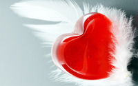 Heart and feather wallpaper 2880x1800 jpg