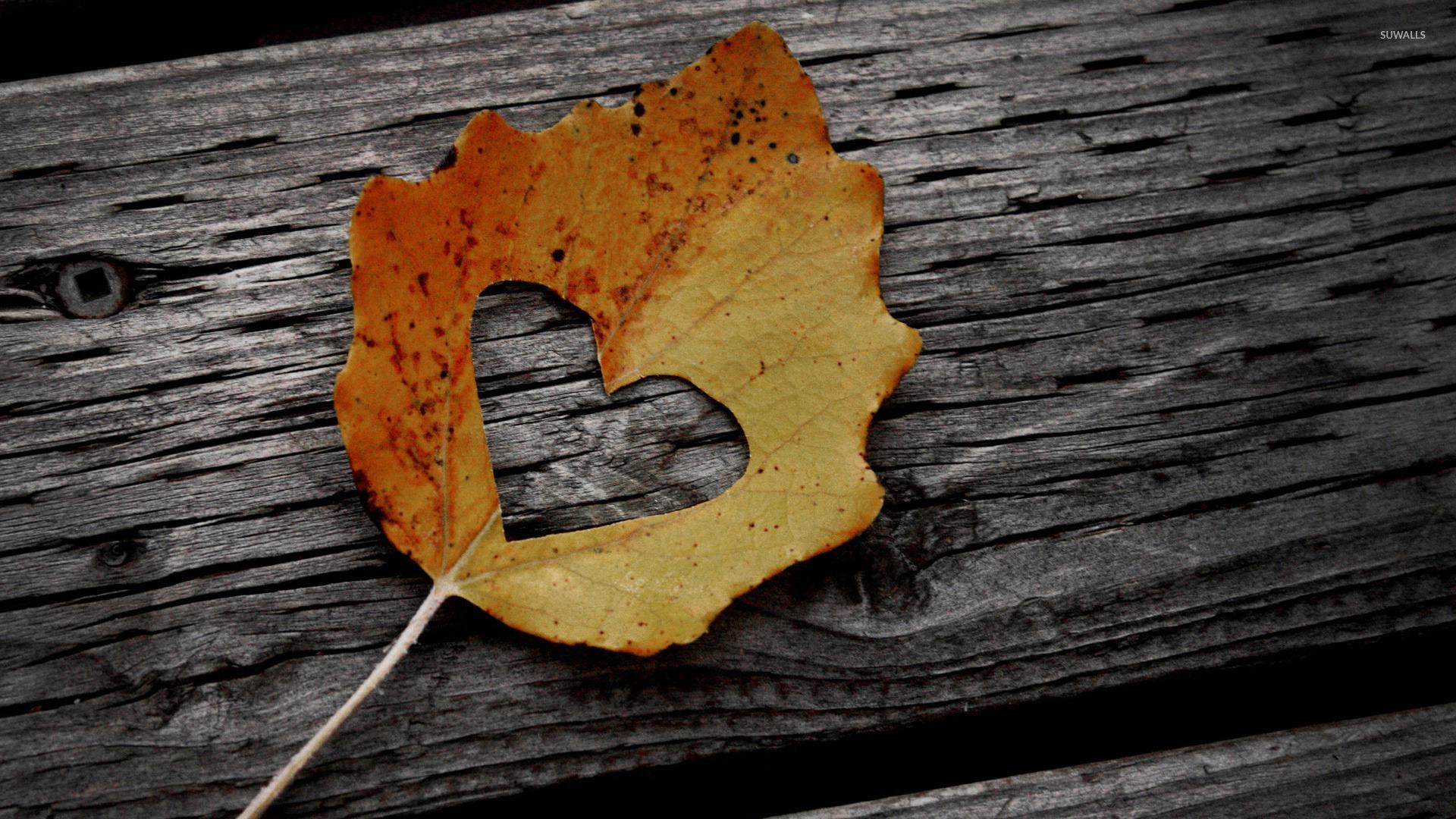 Листья на досках загрузить