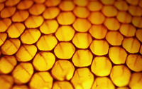 Honeycomb wallpaper 1920x1200 jpg