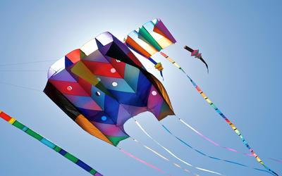 Kites at Makar Sankranti wallpaper