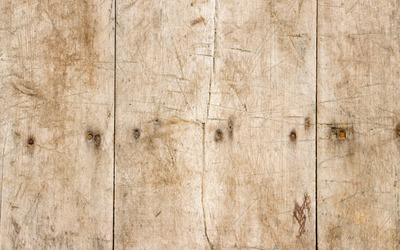 Old scrateched wood with rusty nails wallpaper