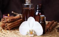 Orchid and cinnamon wallpaper 2560x1600 jpg