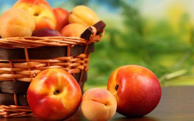 Peach harvest wallpaper