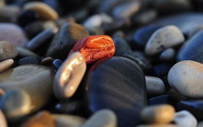 Pebbles [2] wallpaper