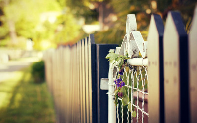 Purple flower hanging from a gate wallpaper