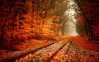Railway in Autumn wallpaper 1920x1200 jpg