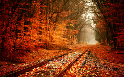 Railway in Autumn wallpaper