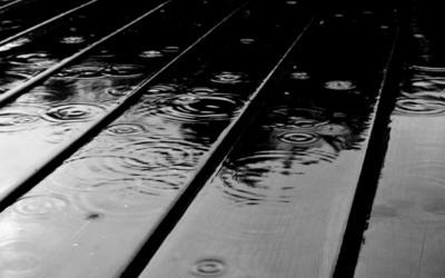 Rain [2] wallpaper