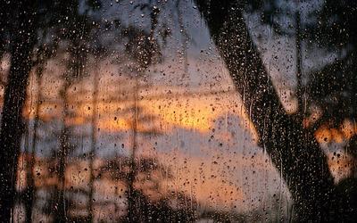 Rain drops on window wallpaper