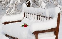 Red rose on the thick snow resting on the wooden bench wallpaper 1920x1200 jpg