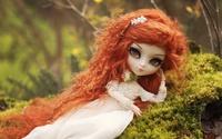 Redhead doll wallpaper 2560x1600 jpg