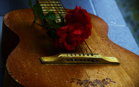 Rose on a guitar wallpaper 1920x1200 jpg