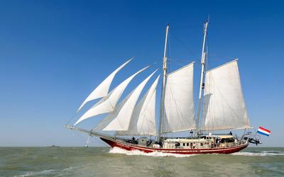 Sailing ship Eldorado wallpaper