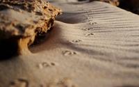 Sand wallpaper 2560x1600 jpg
