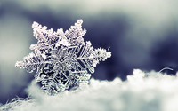 Snowflake wallpaper 1920x1200 jpg