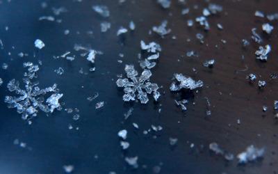 Snowflakes [3] wallpaper