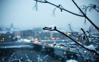 Snowy branch with the city in the background wallpaper 1920x1080 jpg
