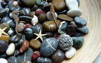 Stones and starfish wallpaper 1920x1200 jpg