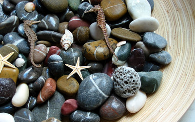 Stones and starfish wallpaper