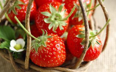 Strawberries [20] wallpaper