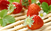 Strawberries [7] wallpaper 1920x1200 jpg