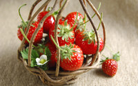 Strawberries [12] wallpaper 1920x1200 jpg