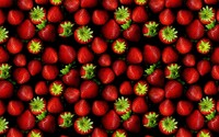 Strawberries [22] wallpaper 2560x1600 jpg
