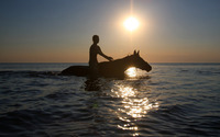 Stroll with a horse in the ocean wallpaper 1920x1200 jpg