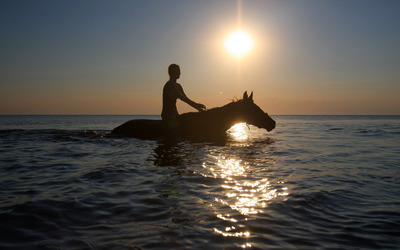 Stroll with a horse in the ocean Wallpaper