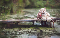 Teddy bear and his hedgehog friend on the pier wallpaper 1920x1080 jpg