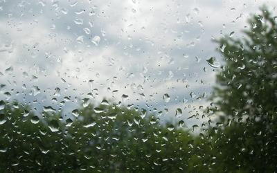 Water drops on a window Wallpaper