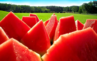 Watermelon slices wallpaper 1920x1200 jpg