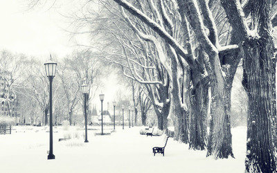 Winter in the park [2] wallpaper