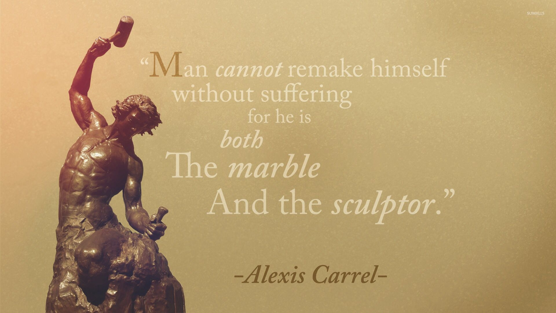 Alexis Carrel Quote Wallpaper Quote Wallpapers 31373