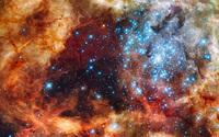 Tarantula Nebula wallpaper 1920x1200 jpg